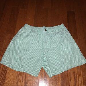 Chubbies Green Stripe Shorts Large
